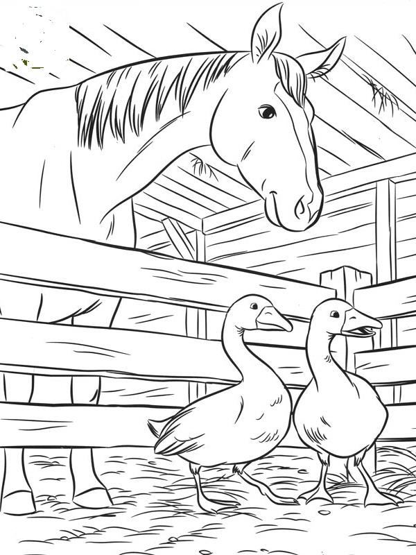 Farvel 230 G Sm 248 Lfer Disney Figurer Heste Og Dyr Billeder